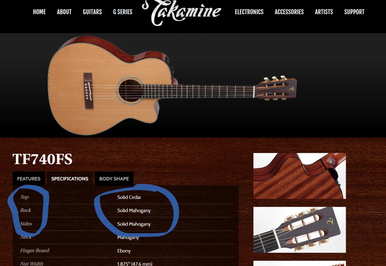 Best Acoustic Guitar (8)