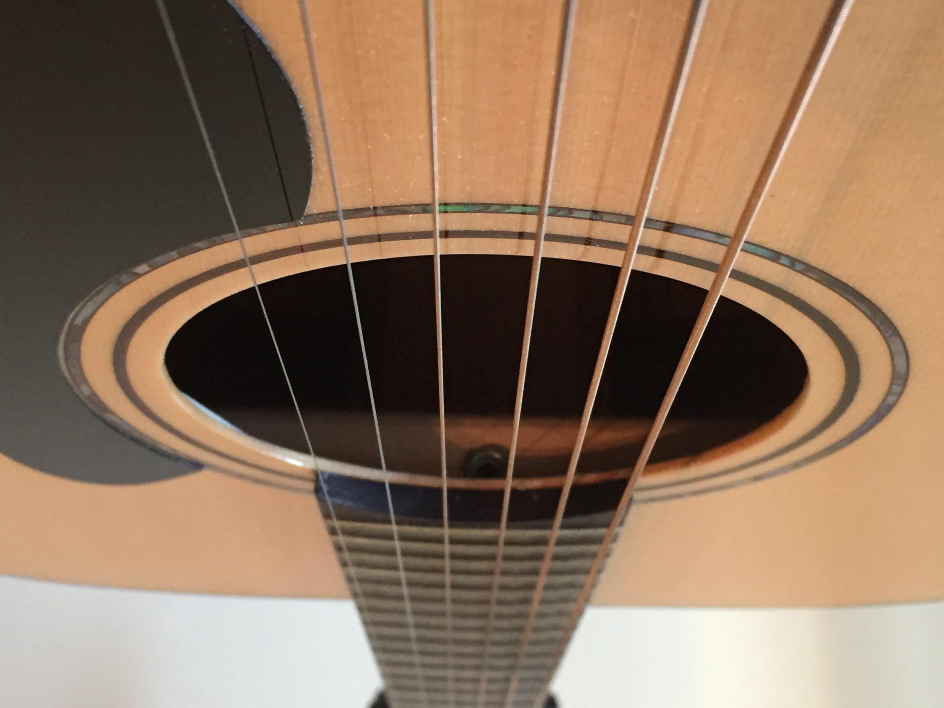 Acoustic Truss Rod