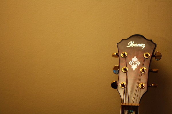 Ibanez Acoustic Guitar Headstock