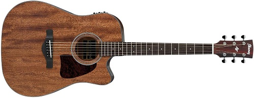 Ibanez Artwood Dreadnought Acoustic Guitar