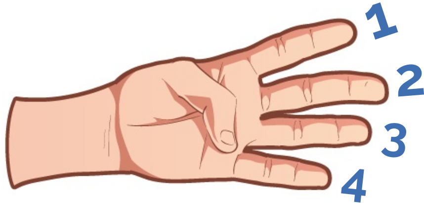 Guitar Scale Hand Diagram