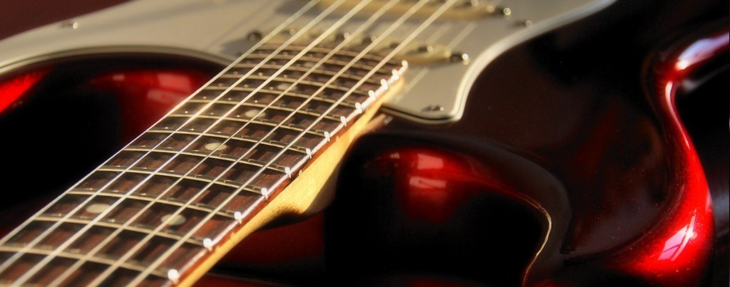 Fender Stratocaster Neck