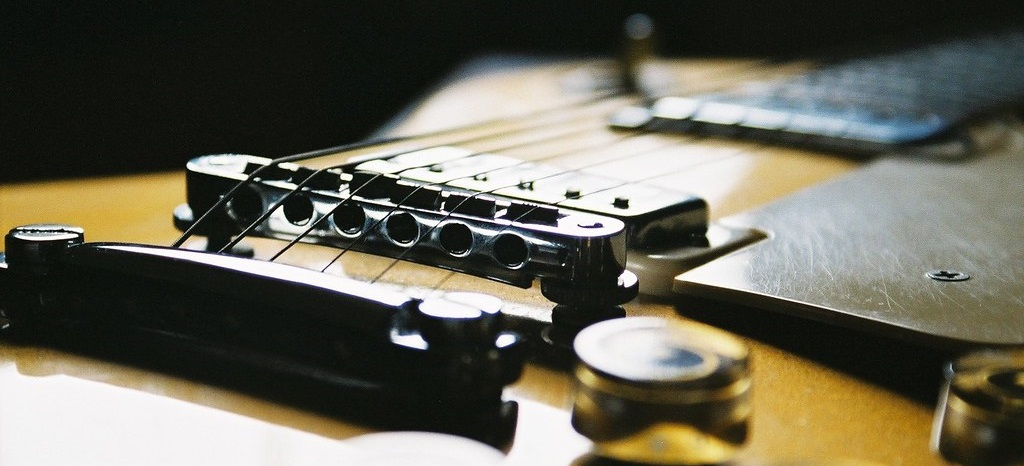 Gibson Les Paul Photograph (1)