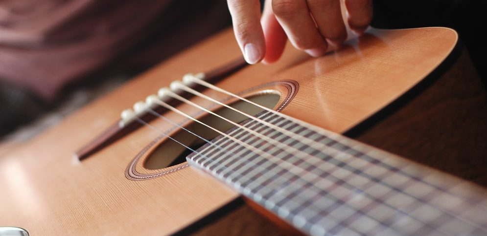 Acoustic Guitar with a Cedar Top Banner Photo (Seagull. S6)