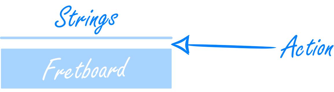 Fretboard Action Diagram