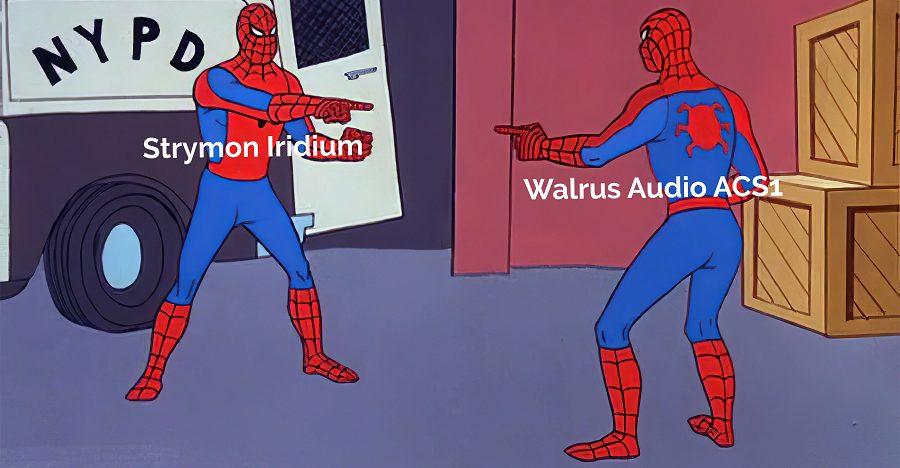 Strymon Iridium VS Walrus Audio ACS1